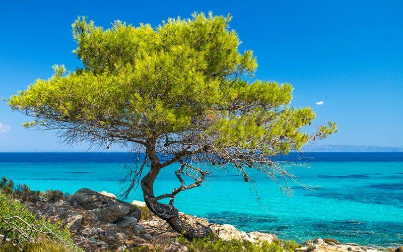 Pauschalurlaub Griechenland