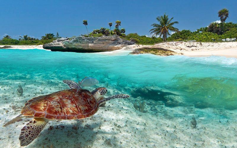Pauschalurlaub Mexiko