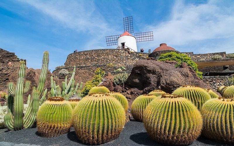 Lanzarote Pauschalurlaub