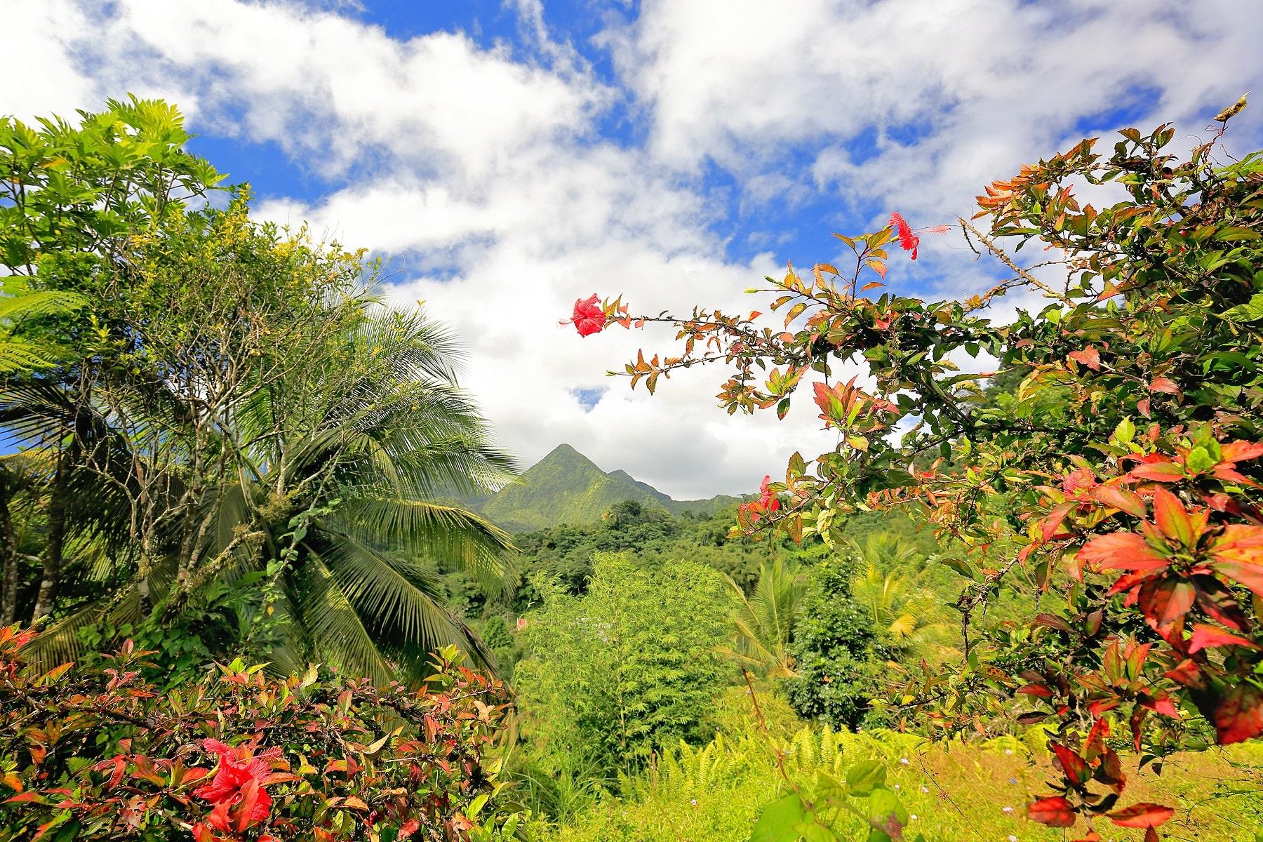 Martinique Pauschalreisen