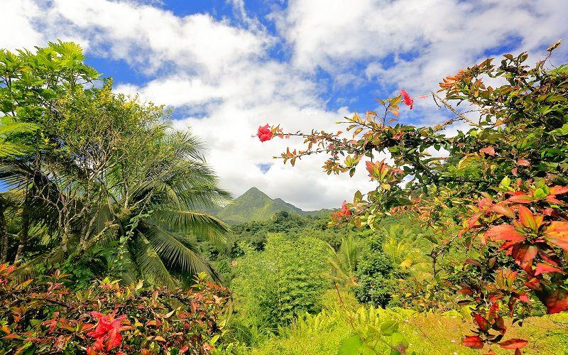 Pauschal in die Karibik