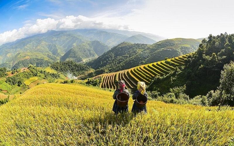 Vietnam Pauschal erleben